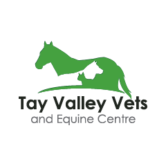 Tay Valley Vets