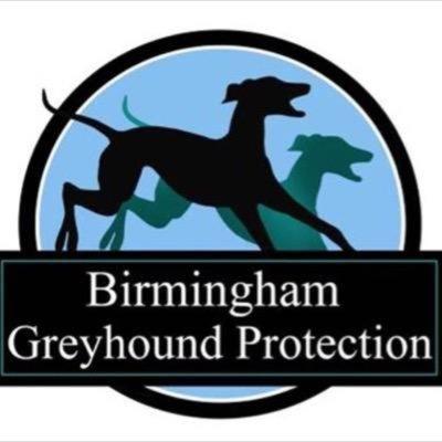 BGreyhoundProtection