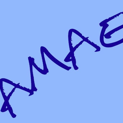 AMAE Sciences Po