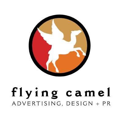 Flying camel yoyo