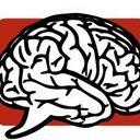 Brain reasonably small