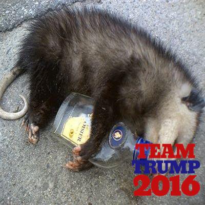 Possum's Pecker on Twitter: