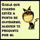 alexa borquez (@11tbAlexa) Twitter