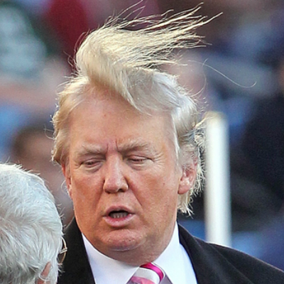 Image result for trump hair in blizzard