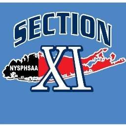 SectionXI