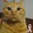 mika_pon's avatar'