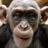 godsharp1111's avatar'