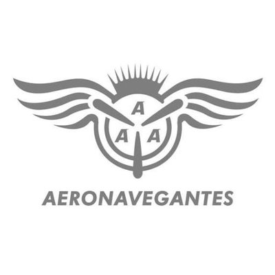 Image result for aeronavegantes logo