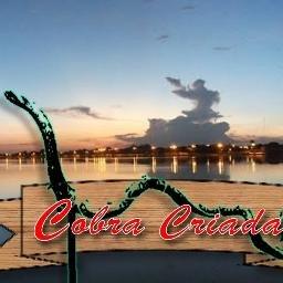 Cobra Criada Cobracriada3 Twitter