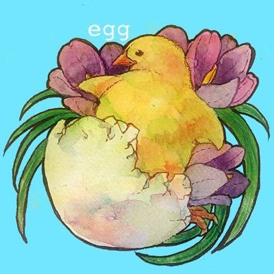 egg Social Profile