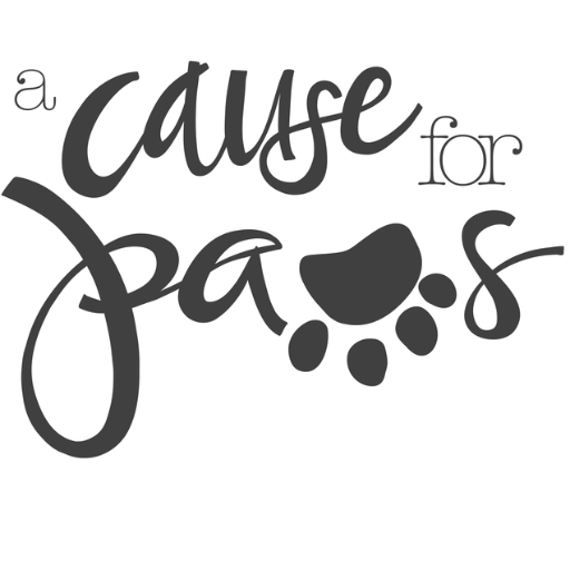 a cause for paws purdueacp twitter