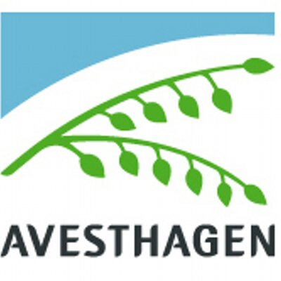 Avesthagen ltd in bangalore dating