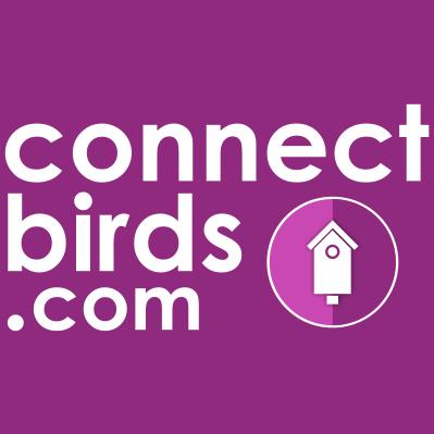 Red social para los amantes de las aves.