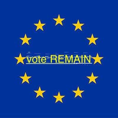 Vote Remain in EU (@vote_stay)   Twitter
