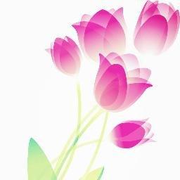 tulipberry0706