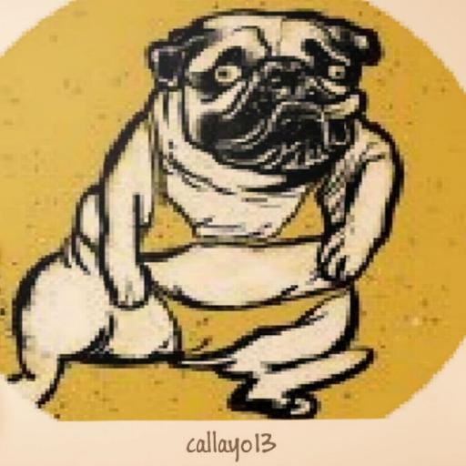 callayo13