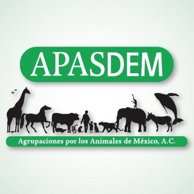APASDEM, A.C.