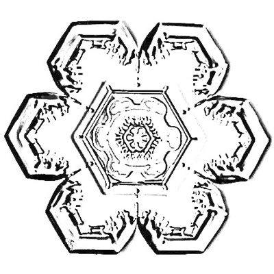 Crystal Clip Crystalclip