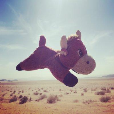 Little Flying Cow At Adventuremascot Twitter