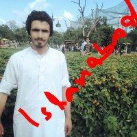 Hayat Mahsood