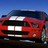 Ford_Mustangs