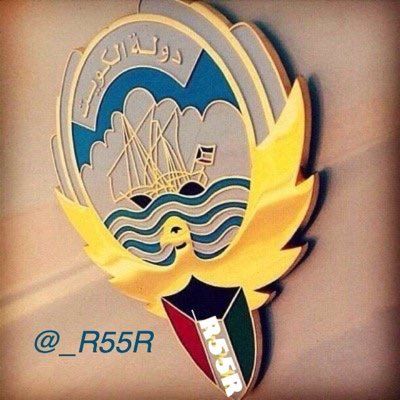 _r55r twitter