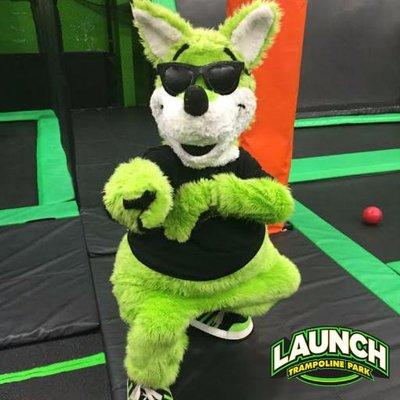 launch trampoline park hartford ct