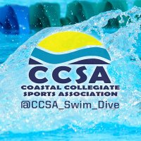 The CCSA | Social Profile
