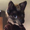 spiritwolf_22 (@22Spiritwolf) Twitter