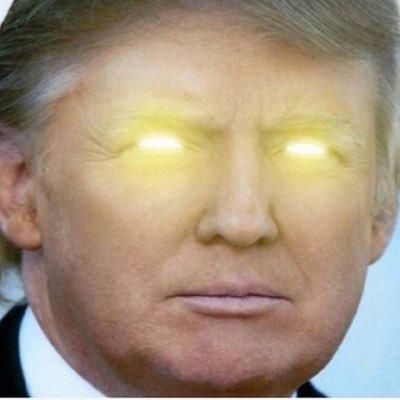 Real DollDonaldTrump