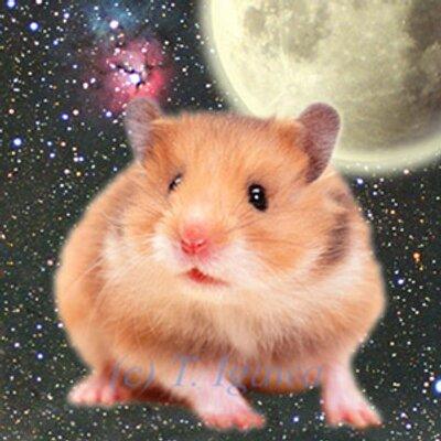 先ほどの ISS (国際宇宙ステーション)明るかったぁぁ。手持ち動画撮影してみました。2017.9.25 19:00頃 https://t.co/XXotWeBqiu