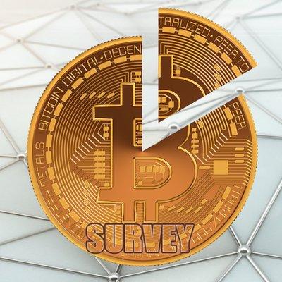 btc survey bitcoin pune