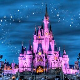 Image result for disney world castle