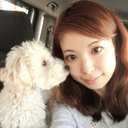 kimiko (@13Km5) Twitter