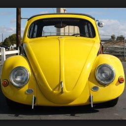 @beetlebug1938