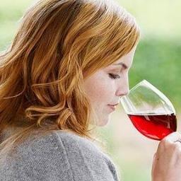 Wine is Lifestyle
