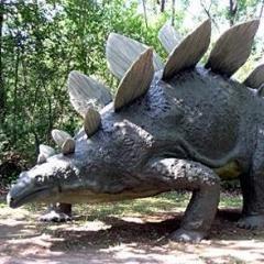 Stegosauro 🌍
