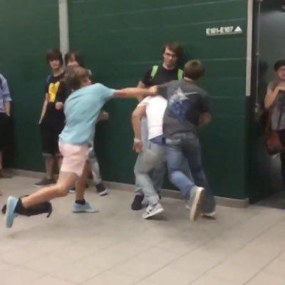 Fight videos