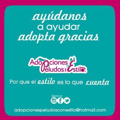 Adopciones Peludos