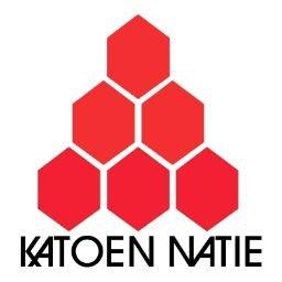 Resultado de imagen para katoen natie