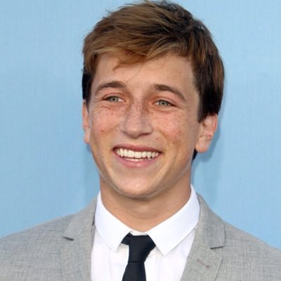 The 22-year old son of father Ron Gisondo and mother Stacey Gisondo Skyler Gisondo in 2018 photo. Skyler Gisondo earned a  million dollar salary - leaving the net worth at 2 million in 2018