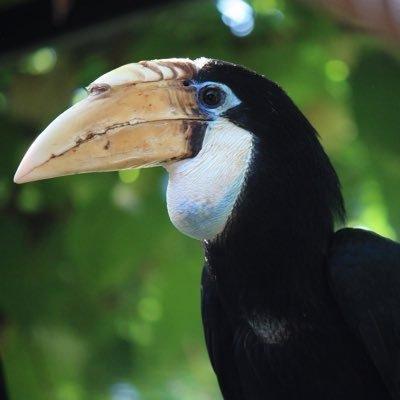 Zoo Citadelle
