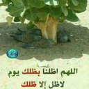 ابو زايد (@05AhPXON7yhX5v6) Twitter