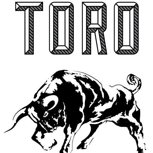 Toro Boston Social Profile