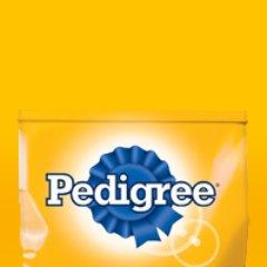 @Pedigree_Mex