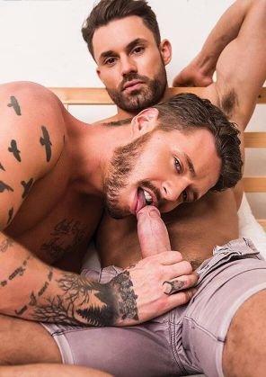 Gay y sex budy divis is looking 6