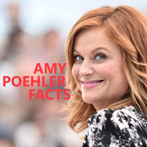 Amy Poehler Facts (@amypoehlerfacts) | Twitter