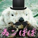 山田山田@近いうちに移行予定 (@0066Jtras) Twitter