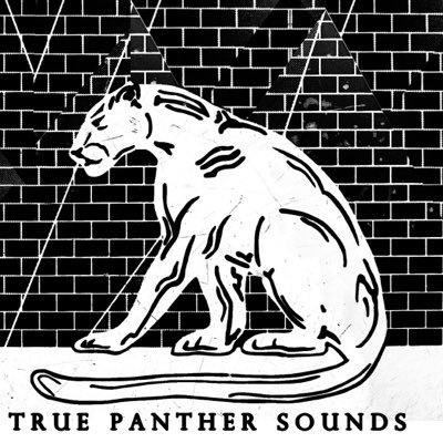 TRUE PANTHER SOUNDS Social Profile
