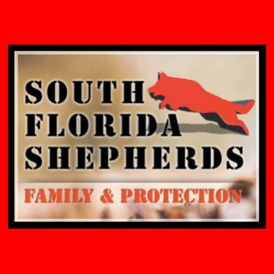 South Florida German Shepherds on Twitter: